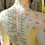 Cursos de acupuntura con viaje a China